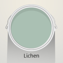 Colours of the Month: Lichen