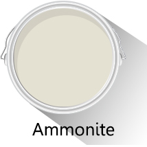 Colour of the month: Ammonite