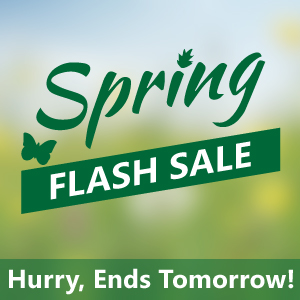 Spring Flash Sale ends Tomorrow