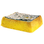 Kitchen Sponges: Our Top 10 Tips for Safety in the Kitchen